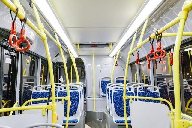 Воронеж получил 30 новых автобусов марки ЛиАЗ в рамках нацпроекта «Безопасные и качественные дороги»