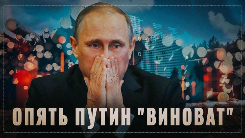 Опять Путин «виноват». Теперь нам начинают рассказывать, почему запрет экспорта леса это плохо