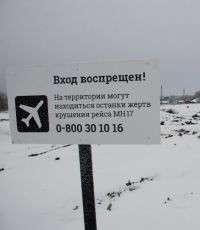 Следователи в Нидерландах запросили сведения о маршруте рейса MH17