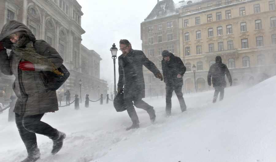 Газпром позволил Европе самой решить, мёрзнуть ли им этой зимой