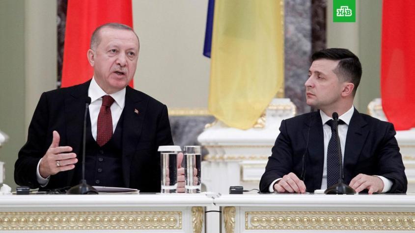 «Эрдоган – усатый таракан» разбушевался, потрясая помидорами