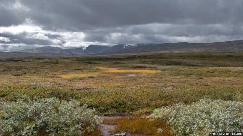 Сибирь и Арктика «теплеют» в разы быстрее, чем остальной мир