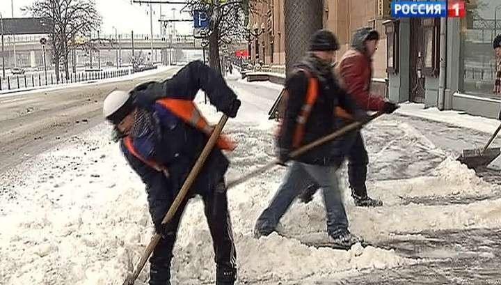 Заметают снега: Сочи и Ярославль превратились в лыжные трассы