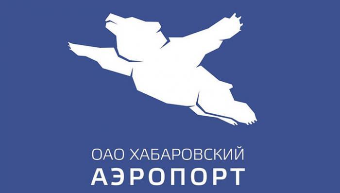 Медведи летают! Новый логотип хабаровского аэропорта взорвал Рунет