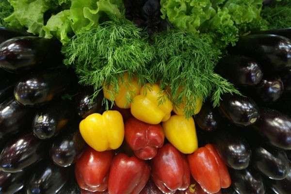 ГМО в России запретят