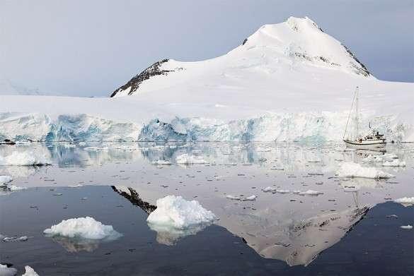 В Антарктиде были тропики. Антарктида, Южный полюс, древняя цивилизация