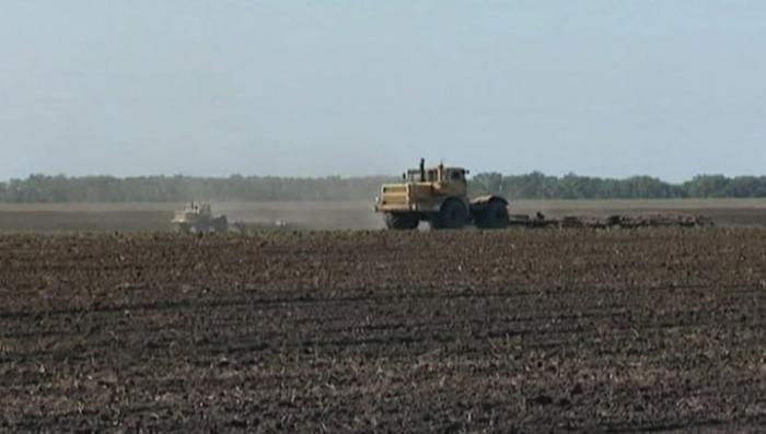 Пахотные угодья Украины распродаются западным концернам