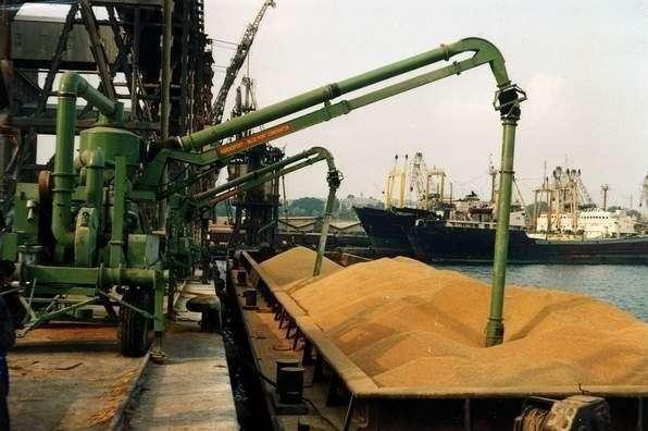 Россия в2014 году увеличила экспорт пшеницы на60%