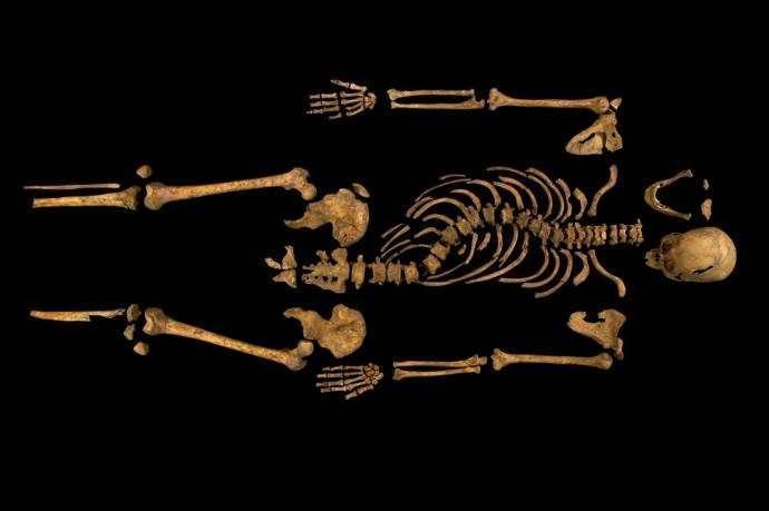 Исследование останков Ричарда III уронило тень на Елизавету II