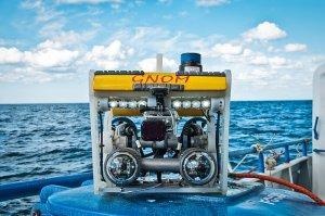 Морские гномы: как российские ученые зарабатывают наподводных роботах