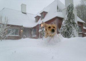 Рекордные снегопады на Северо-Востоке США (ФОТО)