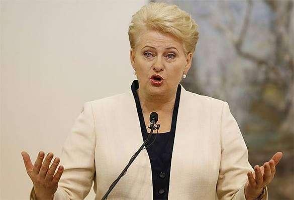 Кто довел президента Литвы до истерики. Даля Грибаускайте, президент Литвы, Литва