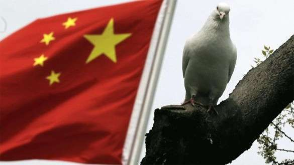 Китай борется с коррупцией во власти: задержаны 16 генерал-майоров. 313222.jpeg