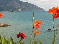 В этом году в Крыму российских туристов будет ещё больше