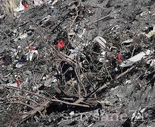 germanwings крушение спиленные деревья