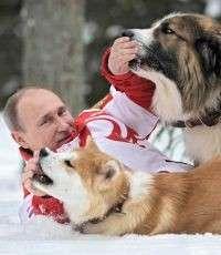 Путин унизил нацию