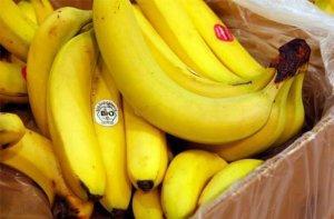 Даже 2 недели жизни без пестицидов и ГМО дают колоссальный эффект!