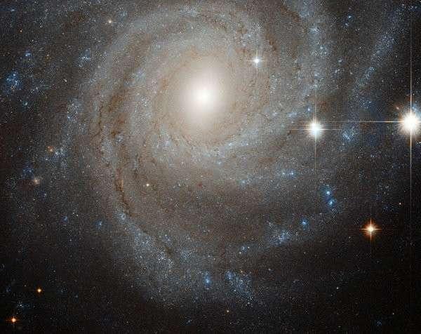 Врачи: На пути к звездам люди рискуют умереть от радиации. галактика