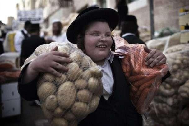 От евреев откровенно о евреях