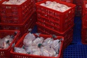 Россельхознадзор запретил транзит мяса птицы из США