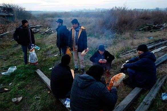 Венгрия построит четырехметровую стену вдоль границы с Сербией для защиты от нелегальных мигрантов. 321984.jpeg