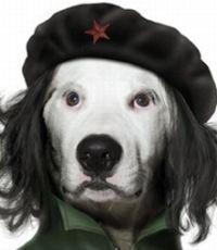 Агент кремлёвского агента Фирташа
