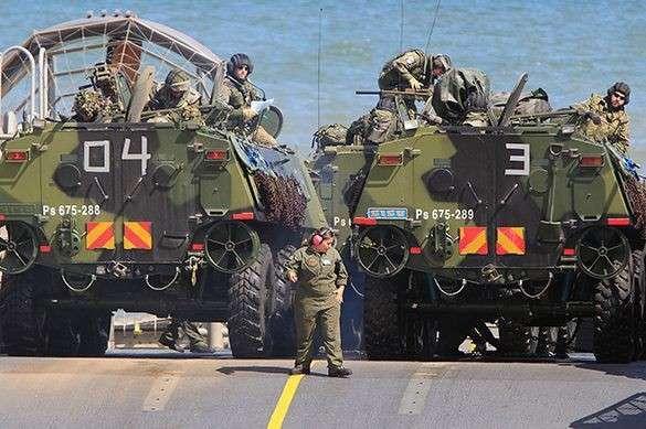 Иванов сравнил Россию и НАТО со слоном и моськой. 322219.jpeg