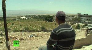 Палестинцы вынуждены работать на израильских фермах, чтобы помочь своим семьям выжить