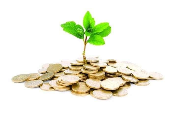 Зарубежные инвесторы: «Если хотите заработать – вам сюда»