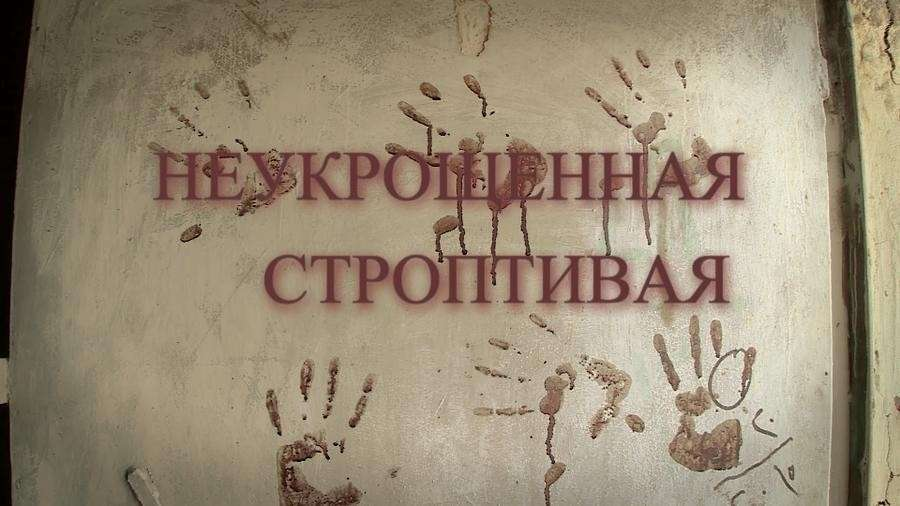 «Неукрощённая строптивая»: премьера фильма на RTД