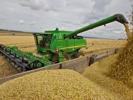 Украину ждут долгие голодные годы