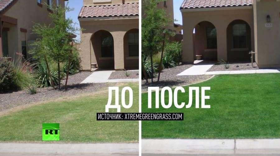 Жители Калифорнии из-за засухи красят газоны