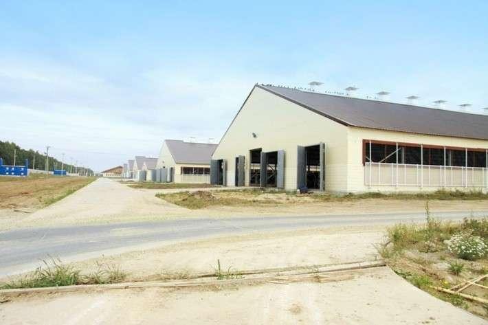 Крупнейший вмире комплекс автоматизированного доения строится вРязанской области