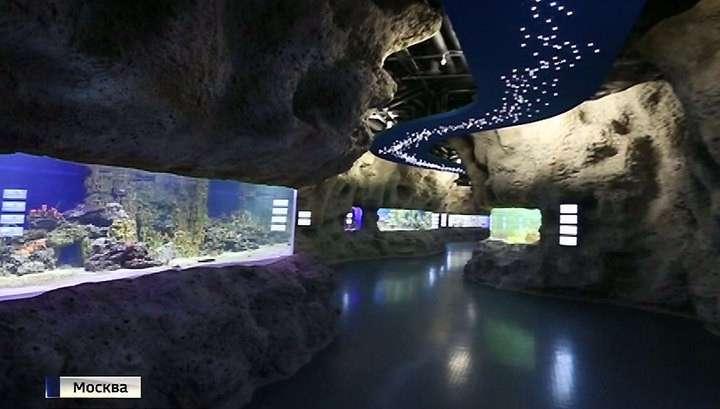 На ВДНХ появился уникальный океанариум