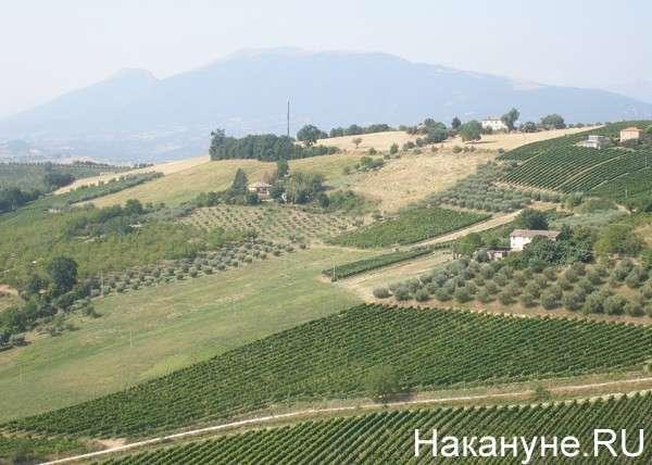 поля, сельское хозяйство, Италия, Оффида Фото: Накануне.RU