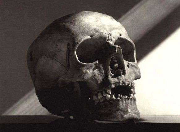 hunters skulls 9