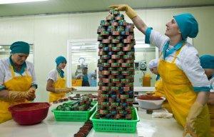 Дмитрий Медведев согласился с необходимостью пропаганды и госзакупок российской рыбной продукции