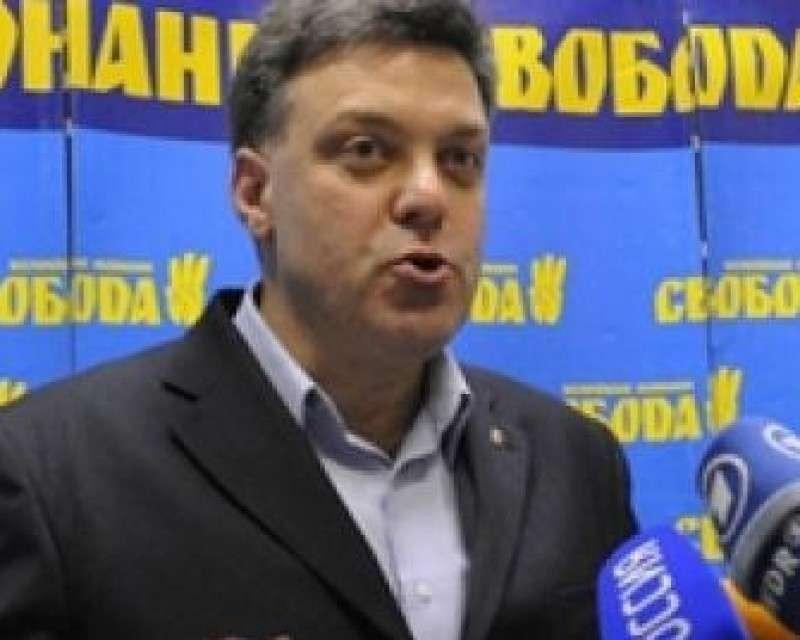 Тягнибоку-Фротману до сих пор снится жёлто-синий флаг над «руинами Кремля»