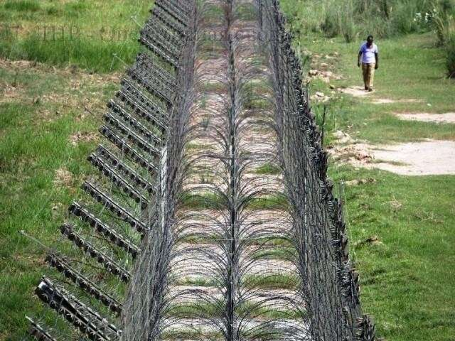 Стена эстонской глупости