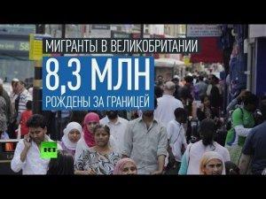Количество мигрантов в Великобритании превысило 8 млн человек