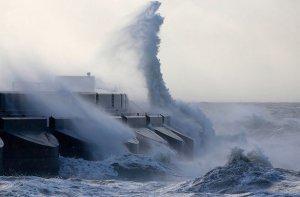 В Приморье ввели режим ЧС из-за тайфуна «Гони»