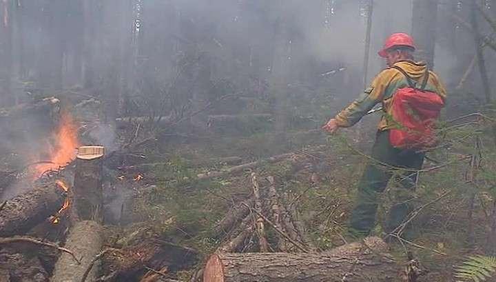 Страшные пожары в Бурятии: бороться с огнём может только авиация