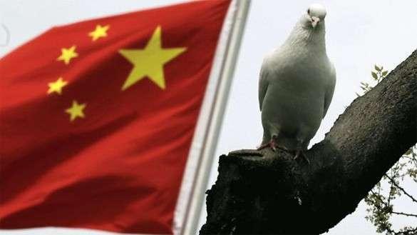 китайский флаг и сокол