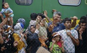 Миграционный кризис в ЕС был намеренно устроен США