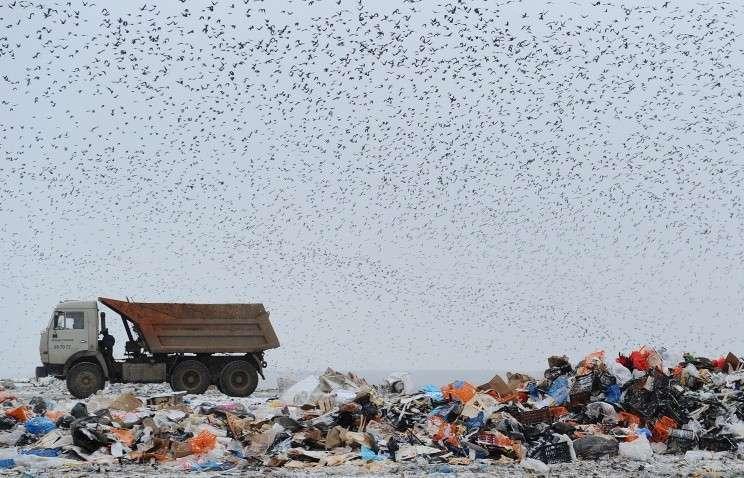Волонтёры вывезли с берегов Байкала 42 КамАЗа с мусором