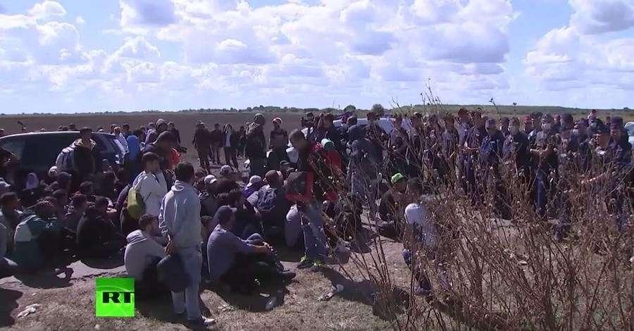 Копенгаген ужесточает миграционную политику чтобы не пустить к себе беженцев
