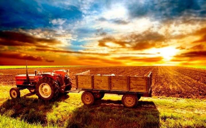 АПК РФ по экспорту догоняет газовиков – сводки «голодающей» России