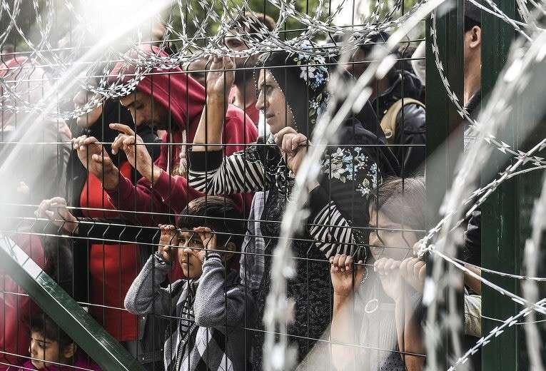 Венгрия закрылась от нашествия стеной