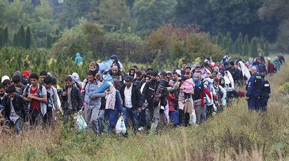 Венгрия, поток мигрантов