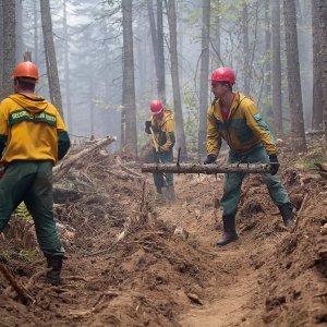 Все лесные пожары в Бурятии потушены